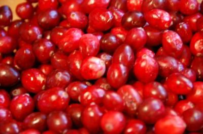 cranberries frische preisel moosbeeren rezept. Black Bedroom Furniture Sets. Home Design Ideas